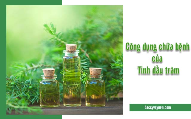 công dụng trị vẩy nến của tinh dầu tràm