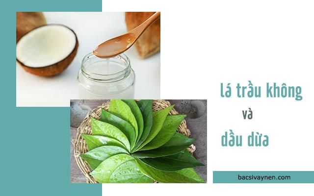 dầu dừa kết hợp với lá trầu không chữa được vẩy nến